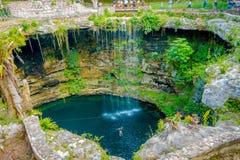 CHICHEN ITZA, МЕКСИКА - 12-ОЕ НОЯБРЯ 2017: Взгляд сверху Ik-Kil Cenote, около Chichen Itza, Мексика Симпатичное cenote с Стоковое Изображение RF