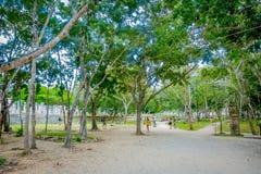 CHICHEN ITZA, МЕКСИКА - 12-ОЕ НОЯБРЯ 2017: Неопознанные люди идя на outdoors в лесе близко к Chichen Itza Стоковая Фотография RF