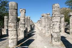 Chichen Itza, Columns in the Temple of a Thousand Warriors Royalty Free Stock Images