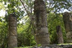Chichen Itza, MEKSYK, turystyka, archeologia Zdjęcia Royalty Free