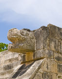 Chichen Itza snake. Stone snake head. Chichen Itza temple in Cancun, Yucatan area of Mexico. Snake head of stone on a temple facade Stock Images