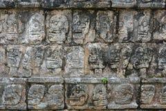 Chichen Itza Tzompantli väggen av skallar (tempel av skallar), M Royaltyfri Bild