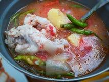 Chichen soppa Royaltyfri Foto