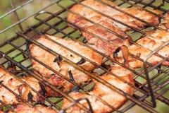 Chiches-kebabs frais sur des brochettes grillées au-dessus du charbon de bois Photographie stock libre de droits