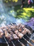 Chiches-kebabs sur des brochettes, grillées dehors un jour ensoleillé photographie stock libre de droits