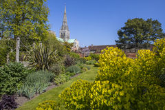 Chichester in Sussex. The spire of Chichester Cathedral viewed from the beautiful Bishops Palace Gardens in the historic cathedral city of Chichester in West stock photos