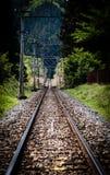 Chichibu Railroad Royalty Free Stock Photography