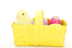 Chick in a basket with some colorful Easter eggs. Little chick in a basket with some colorful Easter eggs royalty free stock photos