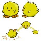 Chick cartoons Stock Photography