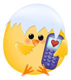 Chick with cellphone Stock Image