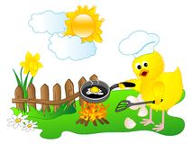 Chick chef Royalty Free Stock Images