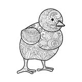 Chick coloring book for adults vector Stock Image
