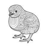 Chick coloring book for adults vector Stock Photos