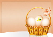 Chick come out of the egg Stock Photography