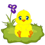 Chick. Cute yellow cartoon baby chicken on spring background. Chick sitting on the green grass stock illustration