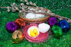 Chick and Easter egg .. royalty free stock image