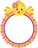 Chick with Flower Frame Royalty Free Stock Photography