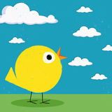 Chick on green grass. Vector illustration of a little yellow chick on green grass with a bright blue sky Royalty Free Stock Photo