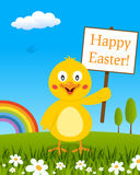 Chick with Happy Easter Sign in a Meadow Stock Image
