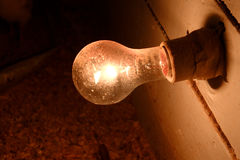 Chick house Light bulb - on Stock Photography