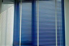 Chick Light Pass azul en el cuarto Foto de archivo libre de regalías