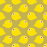 Chick pattern Stock Photos