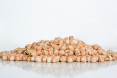 Chick pea. Image of mound chick pea Royalty Free Stock Images