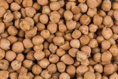 Chick pea as background Stock Image