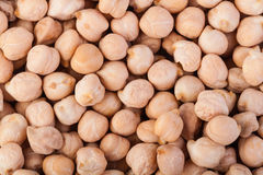 Chick pea. Background closeup photo royalty free stock photos