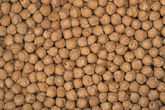 Chick-pea close up. An equal layer royalty free stock images