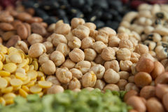 Chick pea and different legumes seed Stock Images