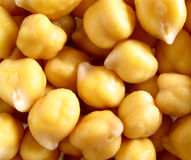 Chick-peas Stock Photography