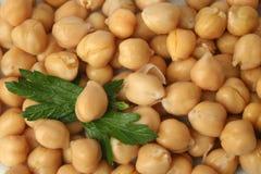Free Chick Peas Stock Photos - 781153