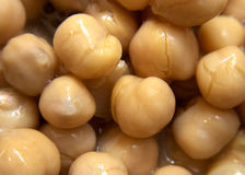 Chick Peas / Garbonzo Beans. Macro close up of a bowl full of chick peas/ garbonzo beans Royalty Free Stock Photography