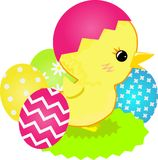 Chick in shell and dyed Easter eggs. Colored vector illustration on the white background royalty free illustration