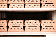 Chick shipping carton Stock Photo