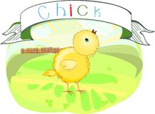 Chick with title Stock Images