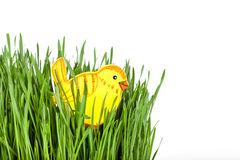 Chick toy in green grass Royalty Free Stock Image
