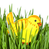 Chick toy in green grass Royalty Free Stock Photography