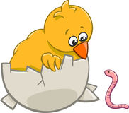 Chick with warm cartoon Royalty Free Stock Photography