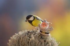Chickadee держит семена подсолнуха в своих клюве и Санте стоковая фотография rf
