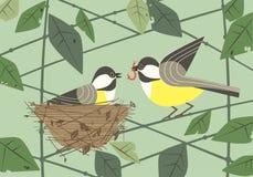 Chickadee birds in nest flat poster vector illustration