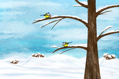 Chickadee birds in winter Royalty Free Stock Image