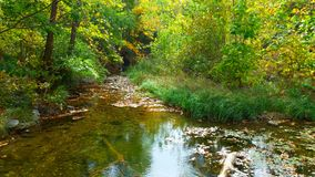 Chickasaw national recreation area. Rock creek in summer Royalty Free Stock Image