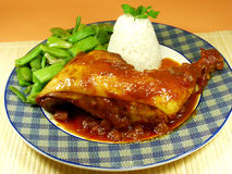 Chicken. Whit tomato sauce, rice and green beans Royalty Free Stock Images