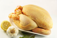 Chicken. Raw chicken on a light background, with lemon, garlic and bay leaf Royalty Free Stock Photo