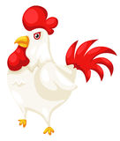 Chicken Royalty Free Stock Photography