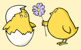 Chicken. Illustration of two funny chicken with a flower Royalty Free Stock Photography