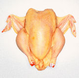 Chicken. Chiken close up on table Royalty Free Stock Images