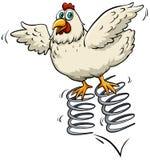 Chicken above the spring Stock Photos